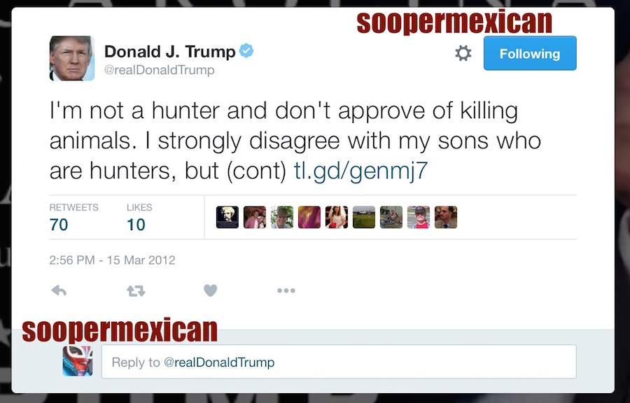 real donald trump gun tweet